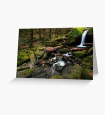 Mother Cummings Cascades Greeting Card