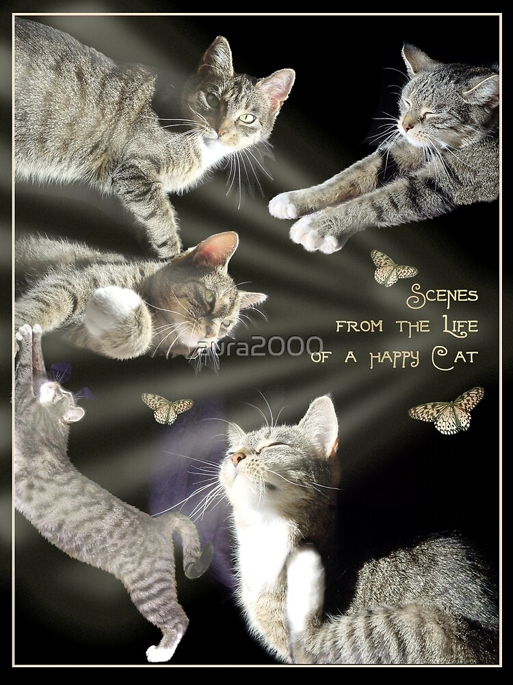 From the life of a happy cat by aura2000