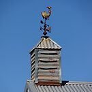 Send in the Clouds - Magpie Springs - Adelaide Hills Wine Region - South Australia by MagpieSprings