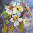 Blütezeit (Vorfrühling) von bevmorgan