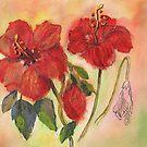 Transitions-Hibiscus von bevmorgan