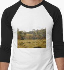 Button Grass and Alpine Coral Fern, Cradle Mountain, Tasmania,Australia. Men's Baseball ¾ T-Shirt