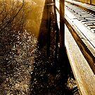 Railway of Olde #2 by Adrienne Talbot