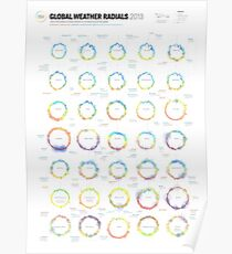 Infographic Weather Radials 2013 Poster