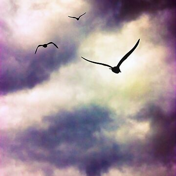 Birds Flying Away by InspiraImage