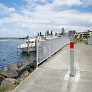 Kleine Tuncurry-Brücke 0014. von kevin Chippindall