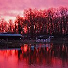 Sunrise at the Flooded Stables by Colin  Williams Photography