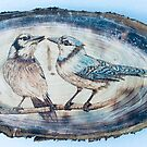 Blue Jays  by CowshedUK