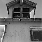 Cotton plantation window by AnalogSoulPhoto