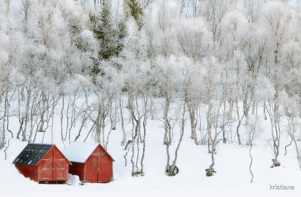 Winter Whiteness by kristiane