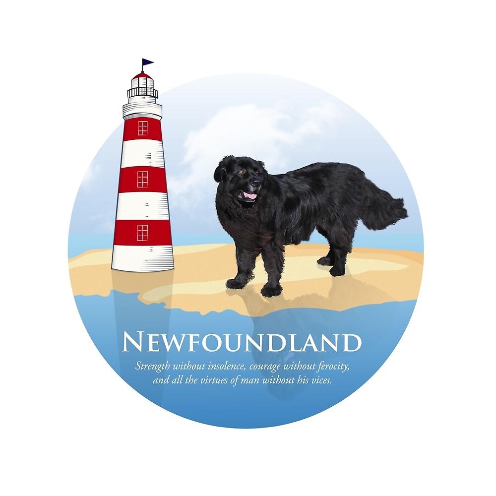 Samson visit Newfoundland! by Christine Mullis