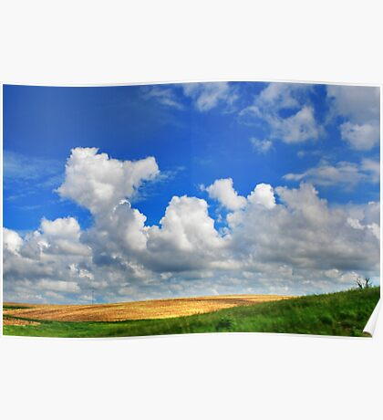 Spacious Skies/ Amber Waves of Grain Poster