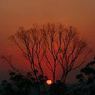 Bushfire Sunset by Kim Roper