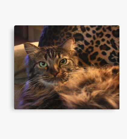Yes, I am Very Furry! Canvas Print