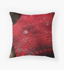 red sea biscuit Throw Pillow
