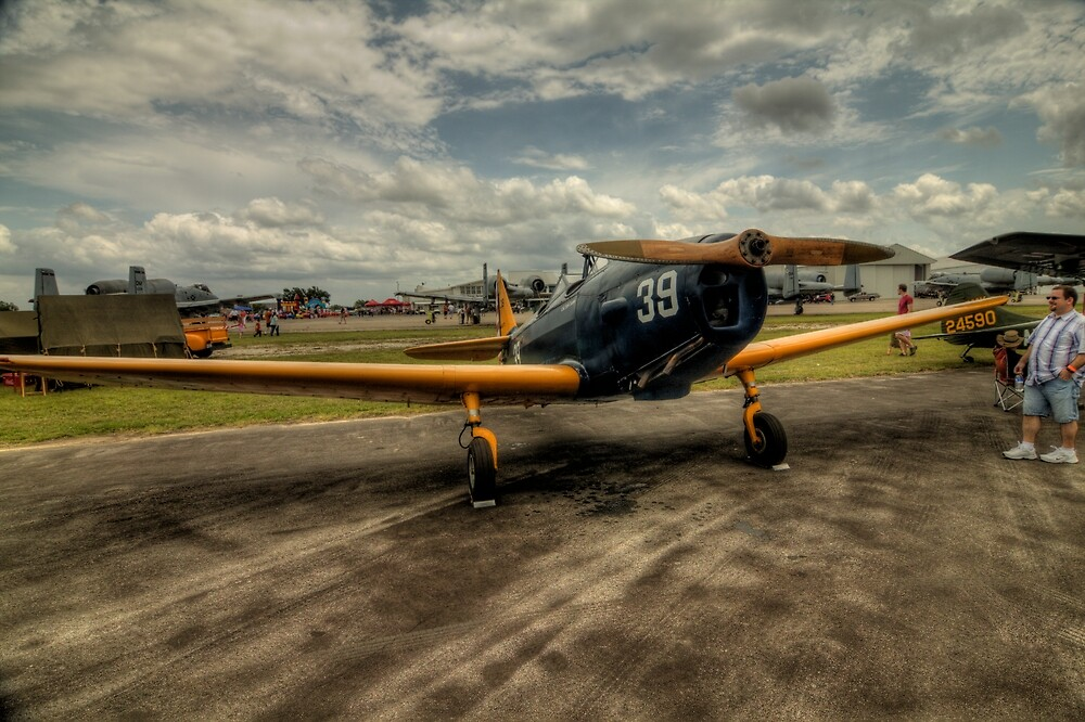 Two-Tone Monoplane by Terence Russell