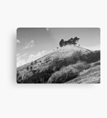 Colmers Hill -  Black and white Metal Print