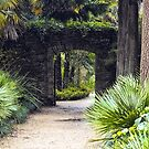 Tropical Pathway by Vicki Field