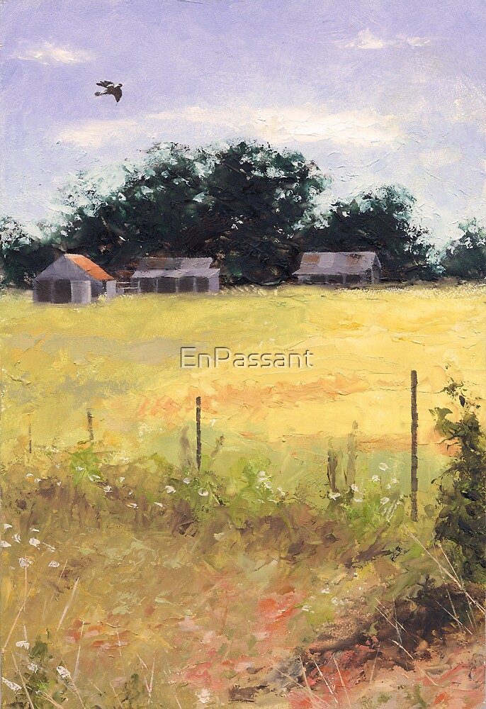 Soaring - near Invergowrie Homestead by EnPassant