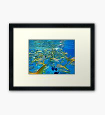 Blue sea and fishes Framed Print
