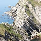Cliffs at Lulworth Cove by Paul Morley