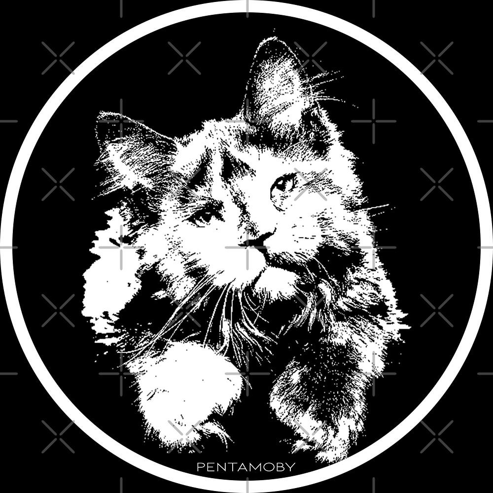 Cute kitty cat (w) by Pentamoby