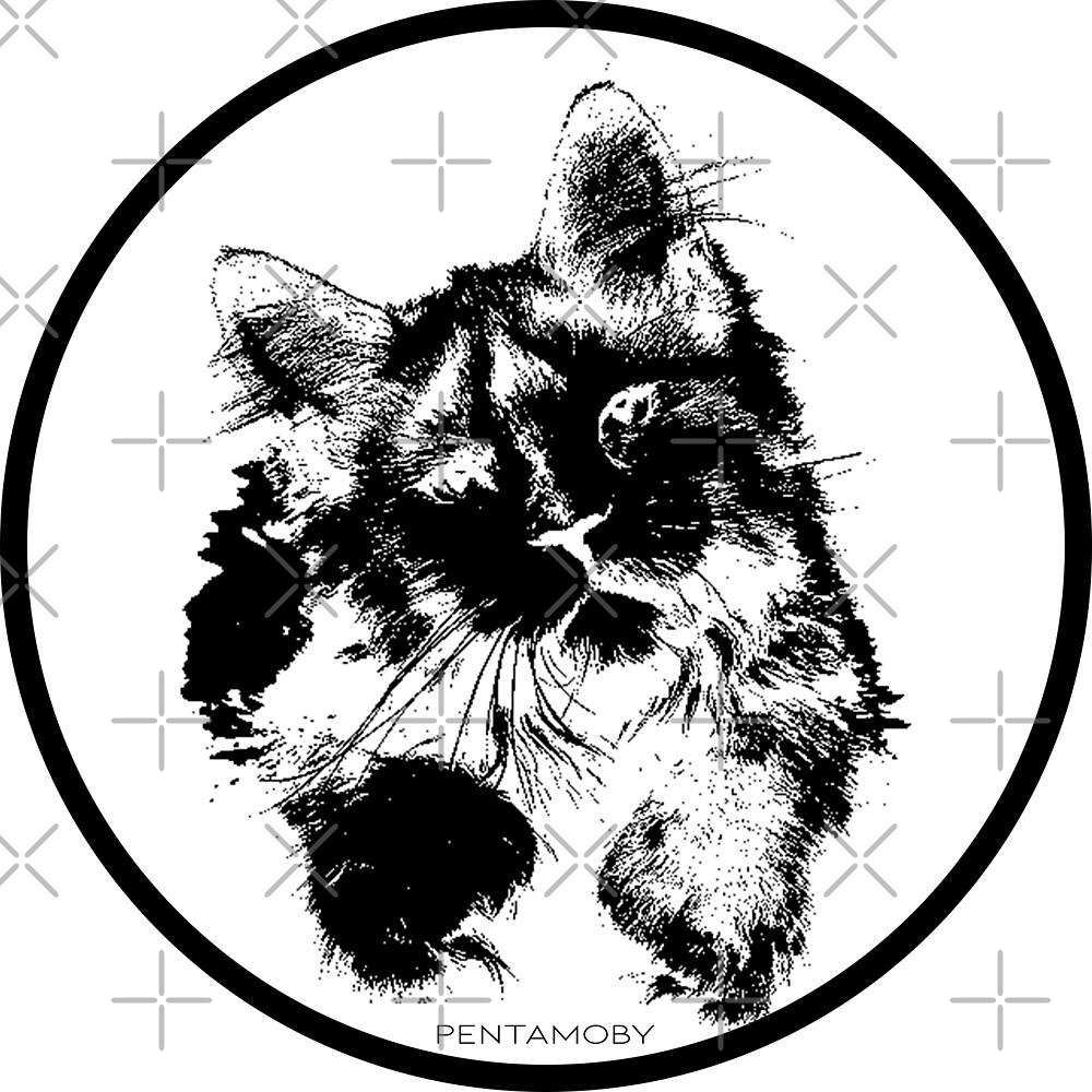 Cute kitty cat (b) by Pentamoby