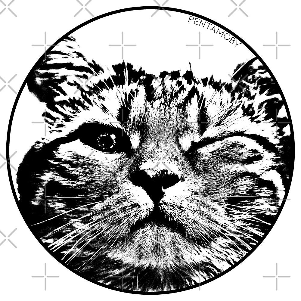 STENCIL WINK CAT (b) by Pentamoby