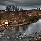 The River Drynoch by Roddy Atkinson