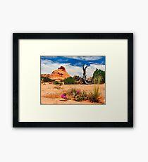 Escalante Framed Print