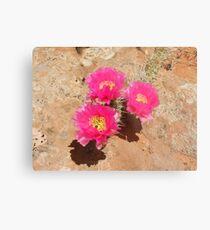 Escalante Cactus Metal Print