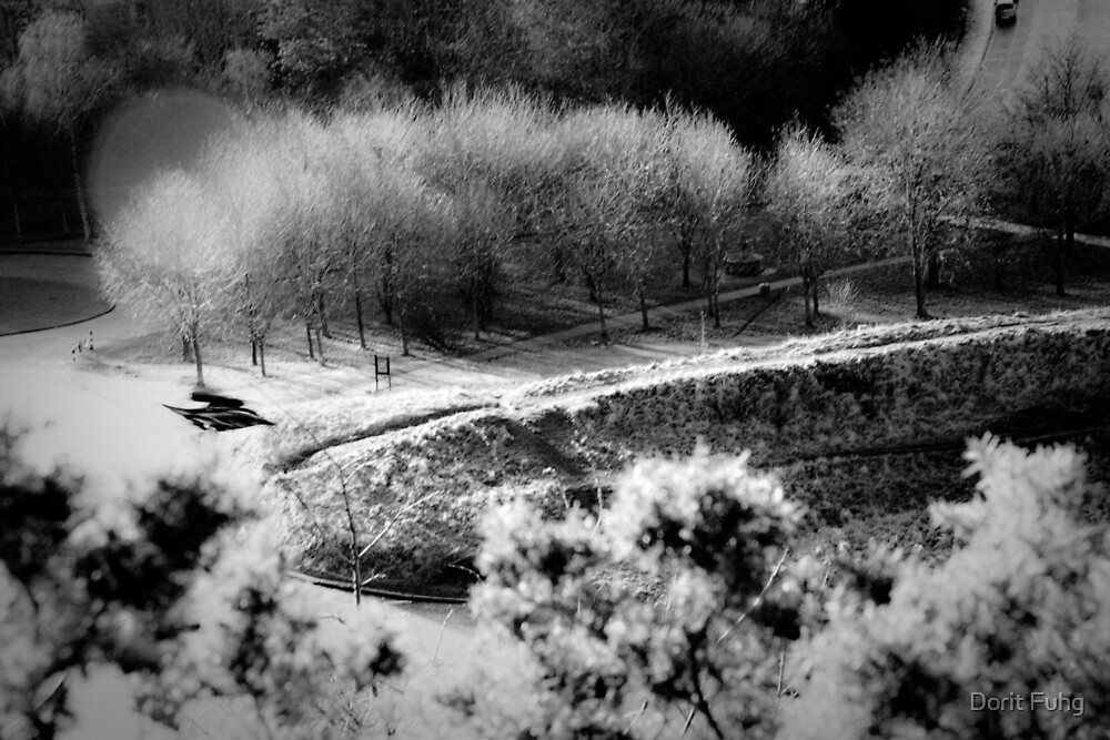 parkways by Dorit Fuhg