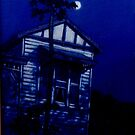 Queenslander Moon by Cary McAulay