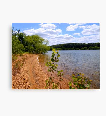 Look at my view Canvas Print