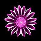 wundervolle Blume in pink und violett von rhnaturestyles