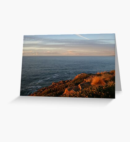 Kissed by the sun... Greeting Card