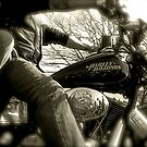 Born to ride.. by raneangel