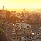 Florentine Sunset by Kasia Nowak