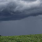 Dem Sturm entgegen von Manon Boily