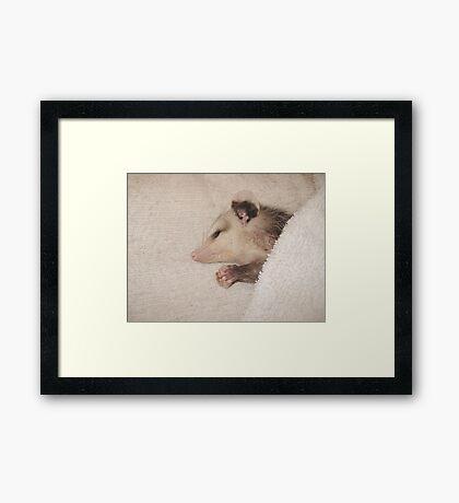 Now I lay me down to sleep - Framed Print