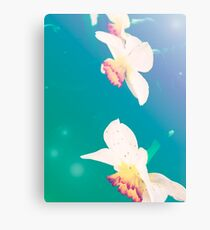 Ethereal Daffodils Canvas Print