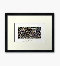 Bicycling for Peace Framed Print