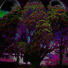 Fairy tree by francine10