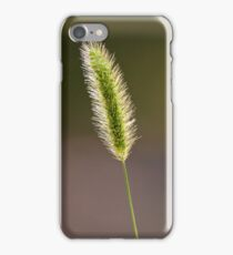 Foxtail iPhone Case/Skin