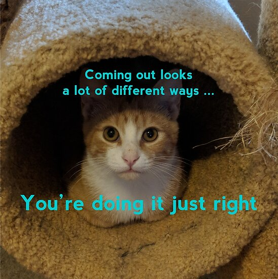 Coming Out Kitty says ... (turquoise text) by Think Again Training and Consulting