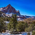 The_Watchman - Winter im Zion National Park, Utah von AlsknMommaBear2
