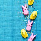 Easter Peeps by carlacardello