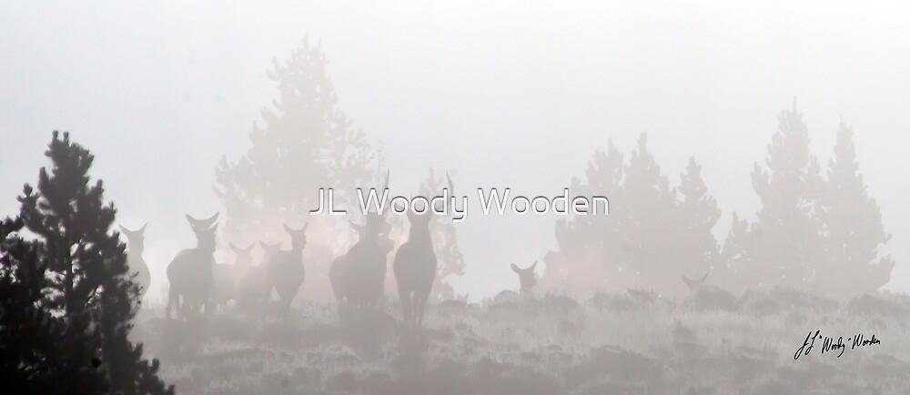 Elk In The Fog by JL Woody Wooden