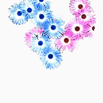 Blue/Pink Daisies T SHIRT by Shoshonan