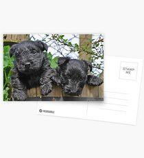 double cute Postcards